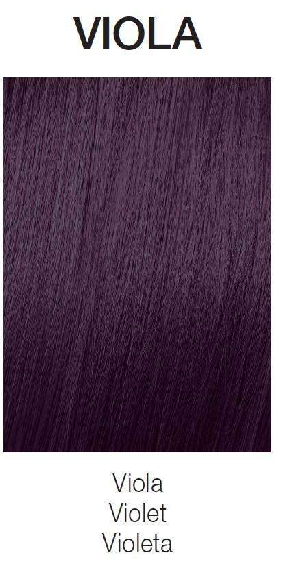 Viola (Violet)